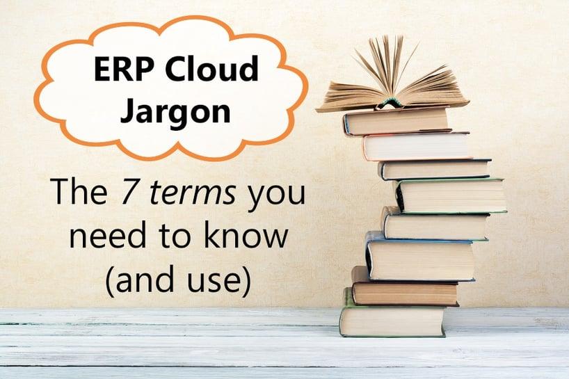 ERP-Cloud-Jargon-books-title.jpg