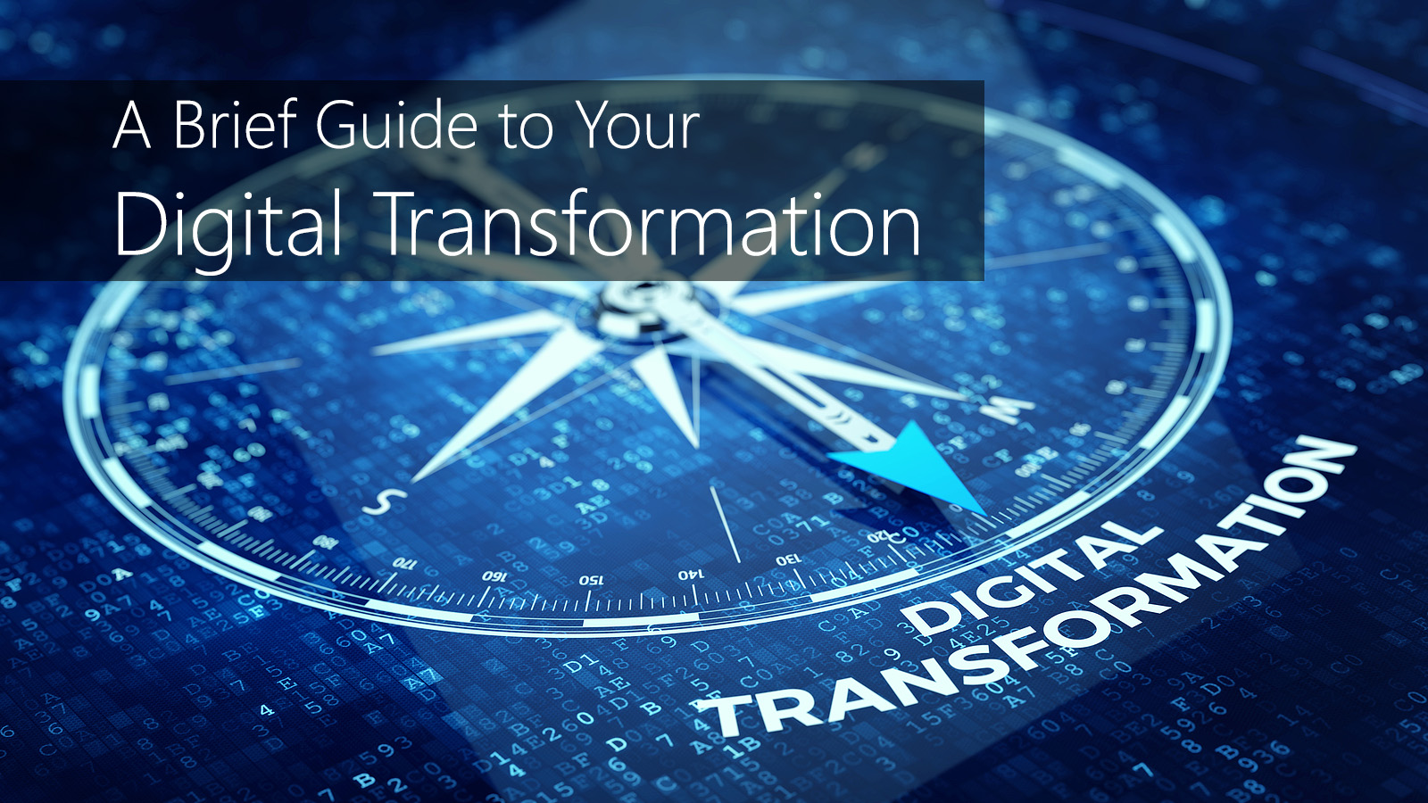 A Brief Guide to Your Digital Transformation