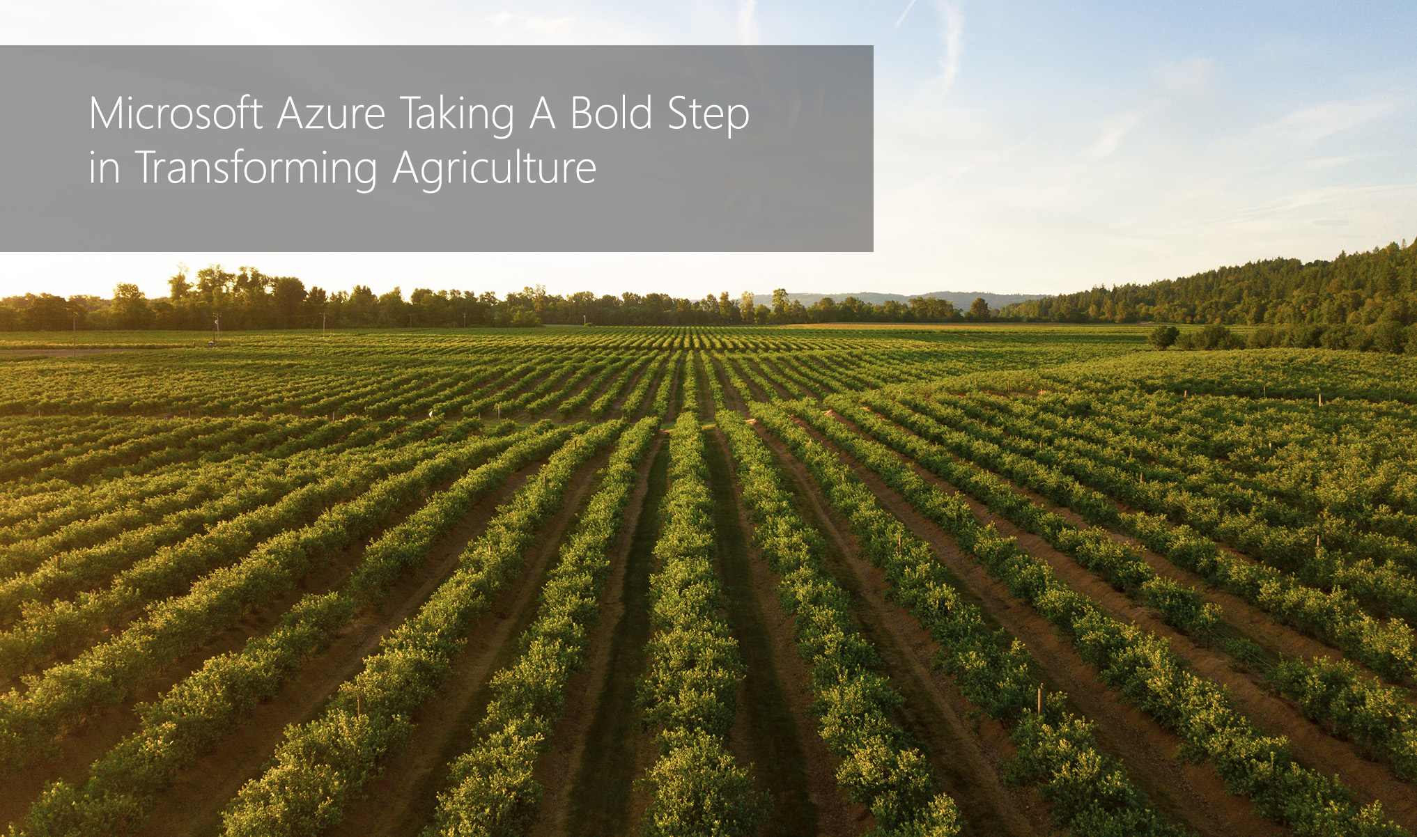 Microsoft Azure Taking A Bold Step in Transforming Agriculture